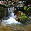 Sanborn Park IMG_0059