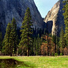Yosemite Valley_IMG_6222