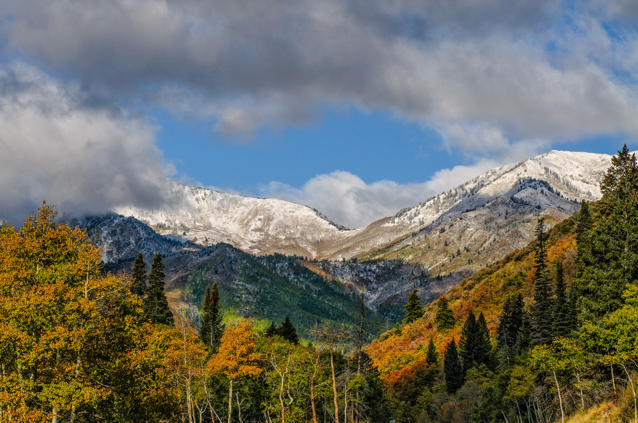 Fall Storm In Big Cottonwood Canyon - Wasatch Mountains - Utah