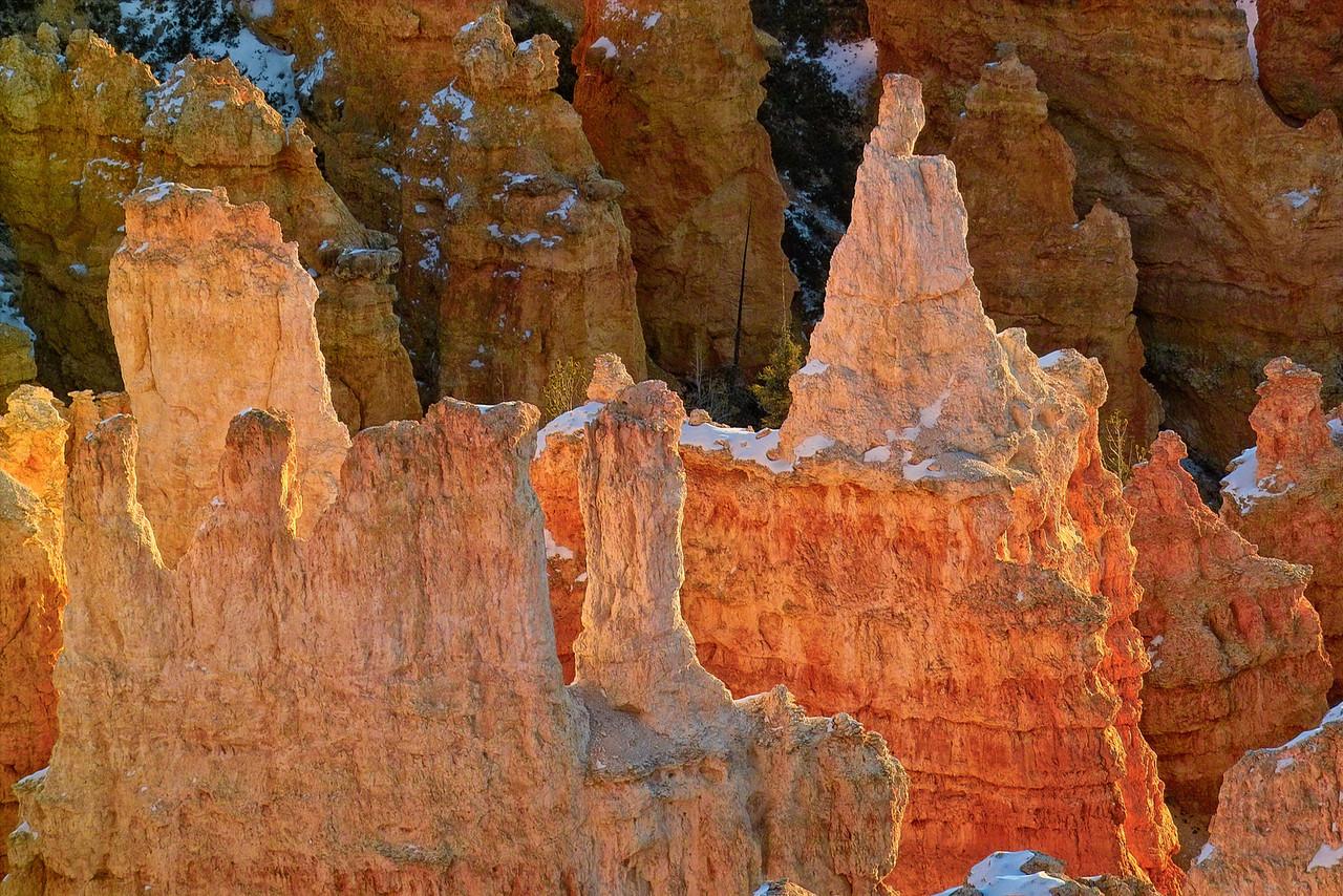 Winter Sunrise In Bryce Nationa Park - Utah