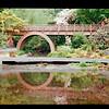 2021-05-23 Crystal Springs Rhododendron Garden-31