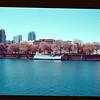 2021-04-10 Portland Waterfront-13