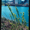 2021-04-10 Portland Waterfront-7