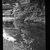 2021-05-23 B&W Film Garden-5