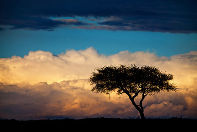 Massive Clouds on the Horizon, Maasai, Mara, Kenya