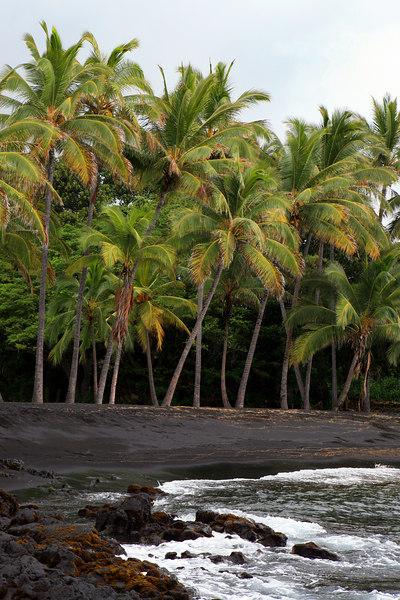 """""""Black Sand Beach""""            Big Island, Hawaii <br /> <br /> Images By Josh<br /> <br /> <br /> <br />   <a href=""""http://www.imagesbyjosh.com"""">http://www.imagesbyjosh.com</a>"""