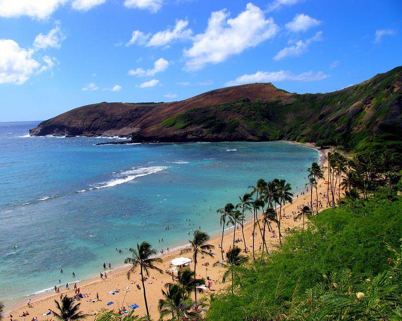 Hawaii Oahu IMG_1887