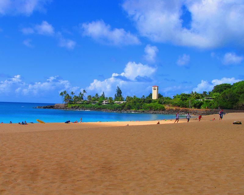 Hawaii Oahu IMG_2241