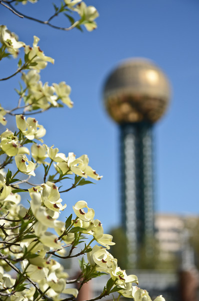 Knoxville-100.jpg