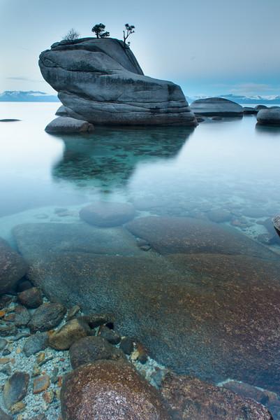 Bonsai Rock Dawn