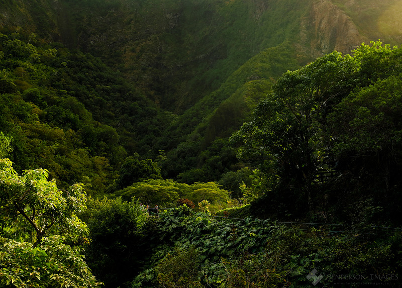 Iao Valley, Maui