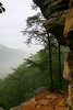 A shot of the trail leading to the cliff face overlooking the Hiwasee river in the Cherokee National Forest.
