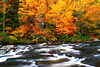 Tellico River in the fall