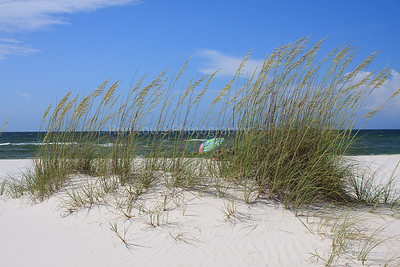 Sea Oats and Beach Umbrealla