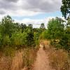 2021-08-08 3-Creeks Natural Area-1