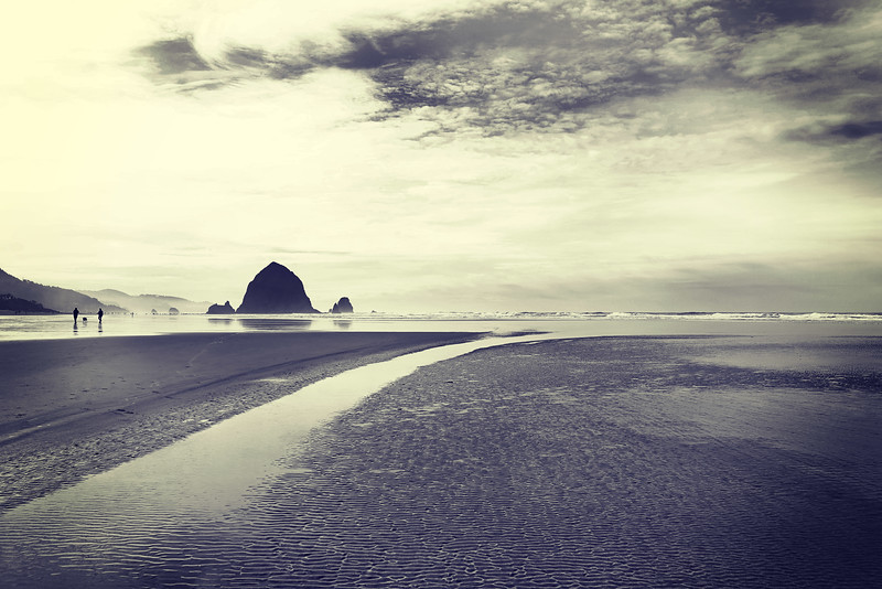 Cannon Beach 022314 22