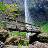 Elowah Falls 060315-47