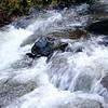 Latourell Falls 112717-21
