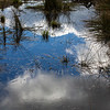 2021-03-06 Boardman Wetlands-42