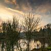 2021-03-04 Kronberg Park-9
