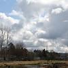2021-03-06 Boardman Wetlands-14-2