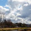 2021-03-06 Boardman Wetlands-14