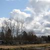 2021-03-06 Boardman Wetlands-12-2