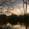 2021-03-04 Kronberg Park-21