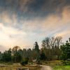 2021-03-04 Kronberg Park-7