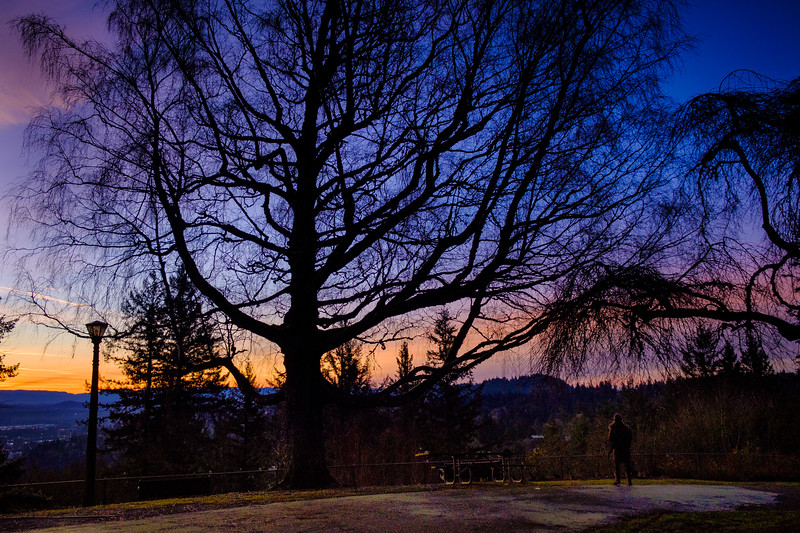 Portland Sunrise 123117-23