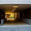2021-06-23 Reed College Photowalk-8