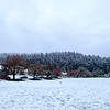2020-03-14 First Snow-8