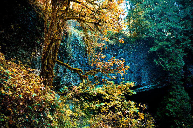 Silver Falls North Falls 103017-57