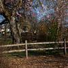2021-03-27 Westmoreland Park-26