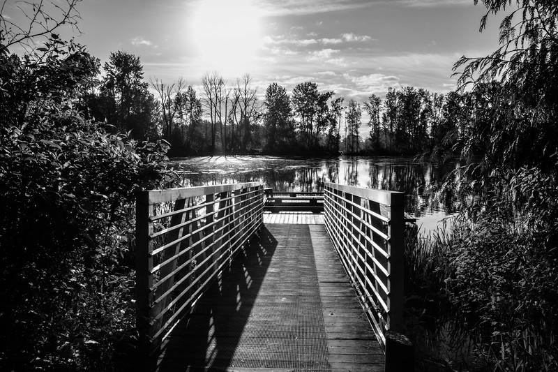 Whitaker Pond 050617-16