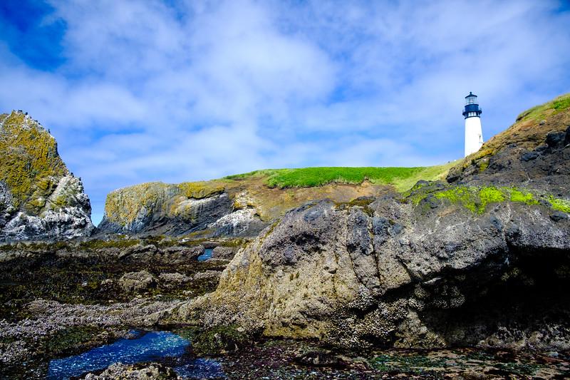 Beach Tidepools Lighthouse 061817-36