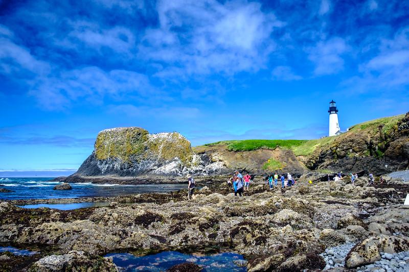 Beach Tidepools Lighthouse 061817-50