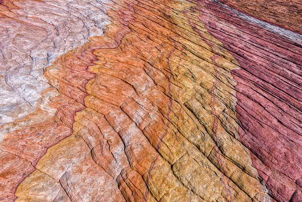 Crazy Hill Sandstone Abstract - Valley Of Fire - Nevada