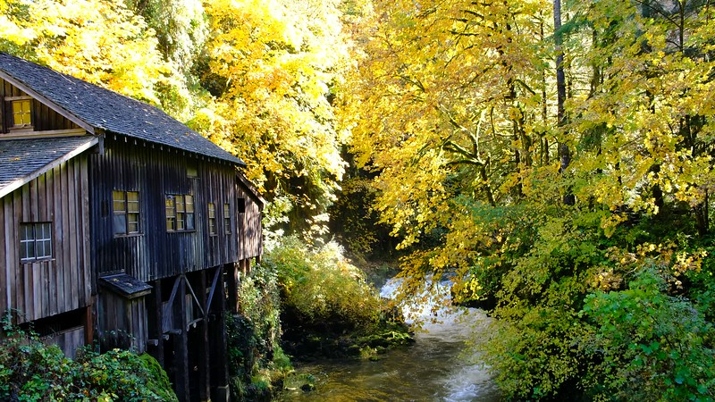 Grist Mill 102317-79