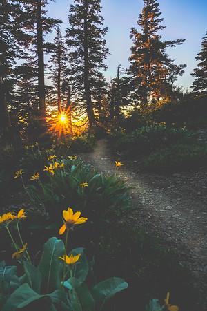 Sierra Buttes Hike, CA