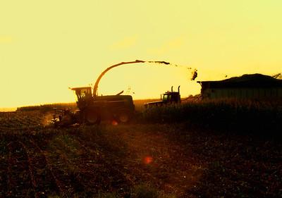 harvest-572-Edit