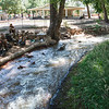 Glad at Least the Water is Clean (Manitou Springs, CO)