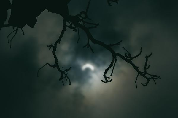 2017 Solar Eclipse, Chicago