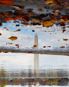 Washington Monument reflected in the Tidal Basin and a mud puddle. Photo by Christine Ruffo All rights reserved