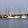 Cape Cod - Vineyard Haven