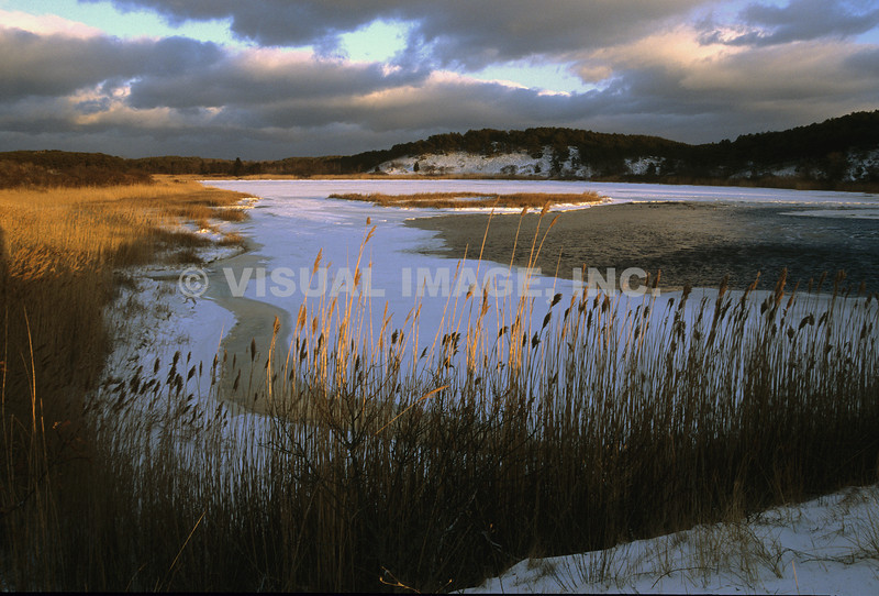 Cape Cod - Eastham