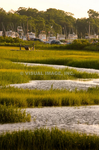 Cape Cod - Eastham/Orleans