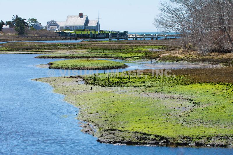 Cape Cod - Harwich Port