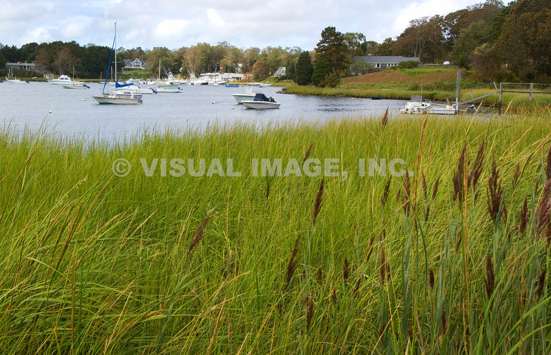 Cape Cod - East Orleans