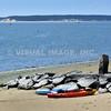 Cape Cod - Wellfleet